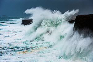 Big storm hitting cliffs, with waves breaking over the top, Shetland, Scotland, UK, July. - SCOTLAND: The Big Picture