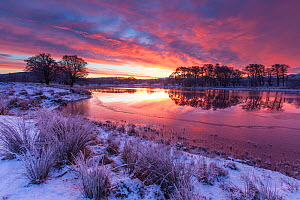 River Spey on winter's dawn, Cairngorms National Park, Scotland, UK.January  -  SCOTLAND: The Big Picture