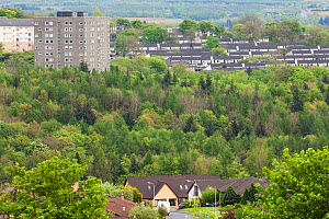 Woodland and trees amidst houses and flats, Cumbernauld, Glasgow, Scotland, UK.May - SCOTLAND: The Big Picture