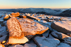 View across Cairngorm plateau to Beinn Mheadhoin in winter, Cairngorms National Park, Scotland, UK., December - SCOTLAND: The Big Picture