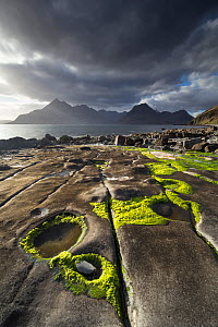 Rocky shoreline, Loch Scavaig and view to Cuillin mountians, Isle of Skye, Scotland, UK, April.  -  SCOTLAND: The Big Picture