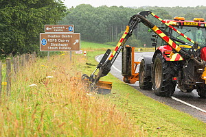 Highway maintainance mowing roadside verge, destroying grassland flowers and plants, A95 near Aviemore, Cairngorms National Park, Scotland, UK, July. July 2016.  -  SCOTLAND: The Big Picture