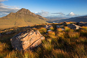 Cul Beag in evening light from Stac Pollaidh, Coigach, Scotland, UK.September  -  SCOTLAND: The Big Picture