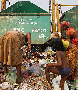 People picking through rubbish from newly arrived skips on landfill site. Guwahati, Assam, India. 2009.  -  Tony Heald