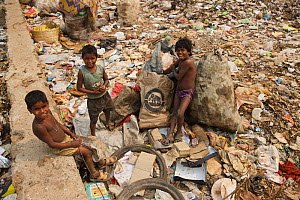 Three boys standing amongst rubbish, residents of landfill site. Guwahati, Assam, India. 2009.  -  Tony Heald