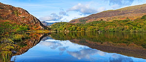 Reflections in Llyn Dinas in the Nant Gwynant valley near Beddgelert looking west with Moel Hebog in the background, Snowdonia National Park, North Wales, UK, October. - Alan  Williams
