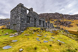 Cwmorthin slate mine showing the remains of terraced cottages for the families of the workers near Tanygrisiau and Blaenau Festiniog. North Wales, UK, February 2018.  -  Alan  Williams
