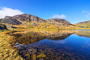 Lake Cwmorthin looking south west showing spoil heaps and ruined cottages of the disused slate mine with pieces of slate covering the bed of the lake in the foreground near Blaenau Ffestiniog, North W...  -  Alan  Williams