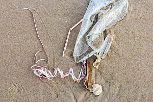 Plastic balloon found washed up on the beach of Texel, the Netherlands - Theo  Bosboom