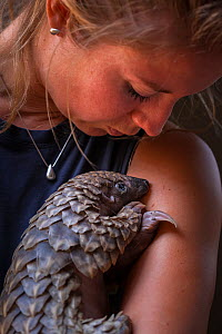 Vet cradling a young orphaned Temminck's Ground Pangolin (Smutsia temminckii) during its rehabilitation at the Rhino Revolution facility in Limpopo Province, South Africa. This orphan was found abando...  -  Neil Aldridge