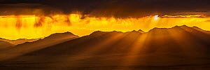 Sunrise over Madison Mountains, Beaverhead National Forest, Montana, USA, July 2011. - Phil Savoie