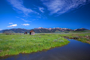 Landscape of Madison Mountain Range, Beaverhead National Forest, Montana, USA, July 2011. - Phil Savoie