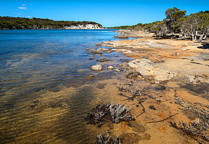 St. Mary's Inlet, Fitzgerald River National Park World Heritage Site, South west, Western Australia, November 2016  -  Marie Lochman