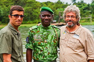 Managing director and Conservation director of Beauval Zoo with head conservationist of Bateke Plateau National Park, following the reintroduction of two female Western lowland gorillas (Gorilla goril...  -  Eric Baccega