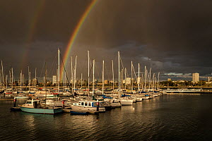 Rainbows over Royal Melbourne Yacht Squadron marina at sunset. Taken from St Kilda breakwater, Melbourne, Victoria, Australia. 2016. - Doug Gimesy