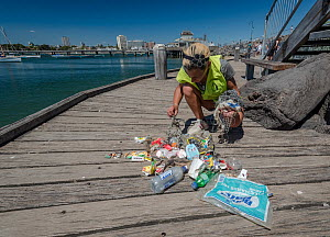 Earthcare St Kilda volunteer on jetty with items from litter pick around Little penguin (Eudyptula minor) breeding colony. Litter includes fishing bait bags, plastic bags, fishing lines, coffee cups a... - Doug Gimesy