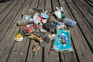 Rubbish found by one volunter during monthly Little penguin (Eudyptula minor) colony nesting clean up. St Kilda breakwater, Melbourne, Victoria, Australia. 2018. - Doug Gimesy