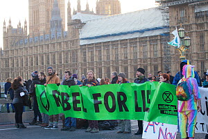 Protestors holding 'Rebel for life' banner at Extinction Rebellion climate change demonstration.. Westminster Bridge with Houses of Parliament in background, London, England, UK. 17 November 2...  -  David  Woodfall