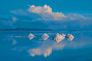 Salt cones on the Salar de Uyuni, Bolivia., March. The Salar is the world's largest salt flat, at over 10500 square kilometres. Salt is shoveled into these cones, to be collected later. March 2012... - John Shaw