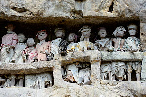 Tau tau, effigies of the dead carved in wood, in walls of Tana Toraja cemetery. The Toraja culture of West and South Sulawesi revolves around death with funeral ceremonies an important part of daily l... - Enrique Lopez-Tapia