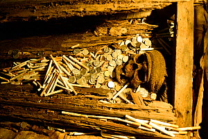 Skull, coins and bones in burial area in cave, Toraja cemetery. The Toraja culture of West and South Sulawesi revolves around death with funeral ceremonies an important part of daily life. Indonesia.... - Enrique Lopez-Tapia
