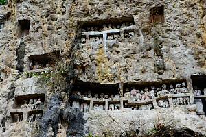 Tau tau effigies of the dead carved in wood, displayed in rockface, Tana Toraja. Toraja is an ethnic group in West and South Sulawesi. The culture revolves around death with funeral ceremonies an impo... - Enrique Lopez-Tapia