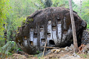 Rock at Toraja cemetery, Tana Toraja. Toraja is an ethnic group in West and South Sulawesi. The culture revolves around death with funeral ceremonies an important part of daily life. Indonesia. 2015. - Enrique Lopez-Tapia