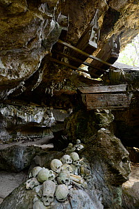 Skulls and coffins in rock wall and caves of Toraja cemetery. The Toraja culture of West and South Sulawesi revolves around death with funeral ceremonies an important part of daily life. Indonesia. 20... - Enrique Lopez-Tapia