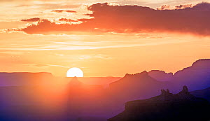Sunset over temples and buttes of Grand Canyon National Park, from Navajo Point, Arizona, USA. May 2019.  -  Jack Dykinga