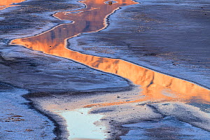 Cottonball Basin salt flats with rivulets reflecting dawn light on the Panamint Range the forms the west side of the valley. Death Valley National Park, Mojave Desert, California, USA, March.  -  Jack Dykinga