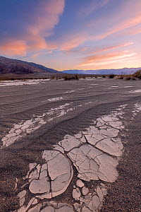 Sand dune interface with cracked clay formations from prior flooding, at sunset. California Mesquite Flats ,Death Valley National Park, Mojave Desert, California, USA. February 2019.  -  Jack Dykinga