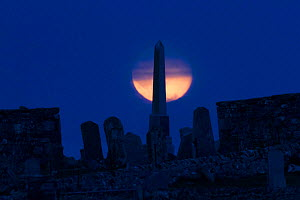 Full moon and obelisk commemorating famous bard in Cemetery of Balranald RSPB Nature Reserve, North Uist, Outer Hebrides, Scotland, UK, June. - David  Woodfall