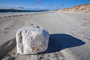 White foam block washed up on west facing beach , rubbish deposited by Atlantic ocean. North Uist, Scotland, UK, June. - David  Woodfall