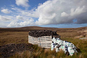 Hand dug peat in stacks, collected by hand, for domestic use. North Uist, Scotland, UK, June. - David  Woodfall