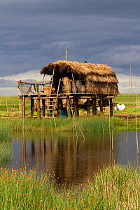 Location for filming 'The Vikings', TV series about the life of a Viking village. Built in a Kilcoole marsh wetland, a special site protected by Irish Govt, for its biological / conservation v...  -  David  Woodfall
