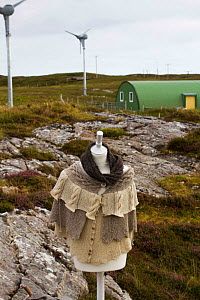 Manequin with high quality knitwear made from sheep grazed on local machair. With wind turbines powering production of wool. North Uist, Scotland, UK, July 2016.  -  David  Woodfall
