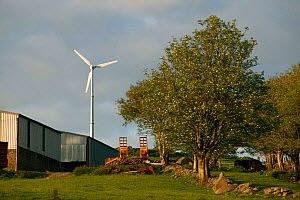 Small wind turbine in farm, Snowdonia National Park, Wales, UK, June. - David  Woodfall