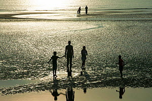 Silhouettes of Sir Antony Gormley's sculptures 'Another Place' on Crosby beach, with tourists reflected in tidal pool, Liverpool bay. Mersey Estuary, England, UK, October 2011.  -  David  Woodfall