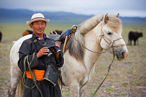 Shepherd with binoculars standing next to horse, looking for cattle. Cattle compete for food with reintroduced Przewalski horse (Equus ferus przewalskii). Great Gobi B Strictly Protected Area, Mongoli...  -  Cyril Ruoso