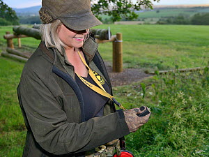 Louise Wilson of Conservation K9 Consultancy uses a clicker to signal to sniffer dog Henry that he has successfully indicated when he has found a Hedgehog in its nest, Hartpury University, Gloucesters... - Nick Upton