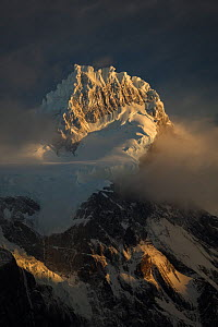 Snow covered Cerro Paine Grande in the Cordillera Paine massif. At sunrise, Torres del Paine National Park, Patagonia, Chile. April 2017.  -  Ingo Arndt