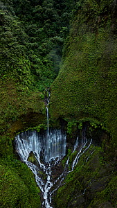 Forest and waterfall. San Rafael, Napo, Ecuador - Lucas Bustamante