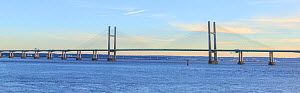 Prince of Wales Bridge, suspension bridge carrying M4 motorway across River Severn between Monmouthshire, Wales and Gloucestershire, England, UK. 2018. Digitally stitched image.  -  Chris Mattison