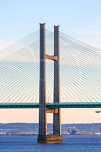 Double pylon supporting Prince of Wales Bridge, suspension bridge carrying M4 motorway across River Severn between Monmouthshire, Wales and Gloucestershire, England, UK. 2018.  -  Chris Mattison