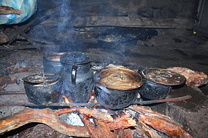 Cooking over fire of endangered Polylepis wood, showing wood store, remote paramo community of La Granja, Azuay, Andes, Southern Ecuador.  -  JIM CLARE