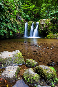 Freshwater pool and waterfall in laurisilva forest. Natural Monument of Caldeira Velha, Ribeira Grande, Sao Miguel Island, Azores, Portugal. - Juan Manuel Borrero