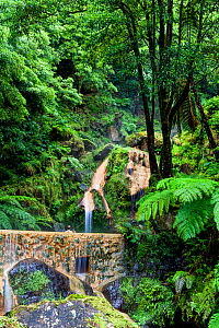 Swimming pool at base of waterfall. Natural Monument of Caldeira Velha, Ribeira Grande, Sao Miguel Island, Azores, Portugal. 2019. - Juan Manuel Borrero
