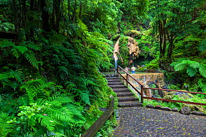 Path through laurisilva forest to pool, two people bathing. Natural Monument of Caldeira Velha, Ribeira Grande, Sao Miguel Island, Azores, Portugal. 2019. - Juan Manuel Borrero