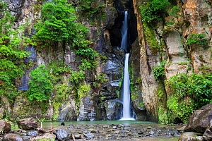 Salto do Cabrito waterfall. Lombadas Valley Nature Reserve, Sao Miguel Island, Azores, Portugal. - Juan Manuel Borrero