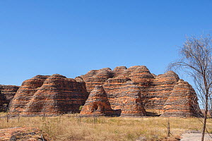 Bungle Bungle rock formation with banding. Purnululu National Park, The Kimberley, Western Australia. 2015.  -  Rick Price